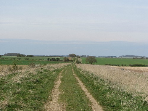 The arrow straight Roman Roads on the Peddars Way Norfolk
