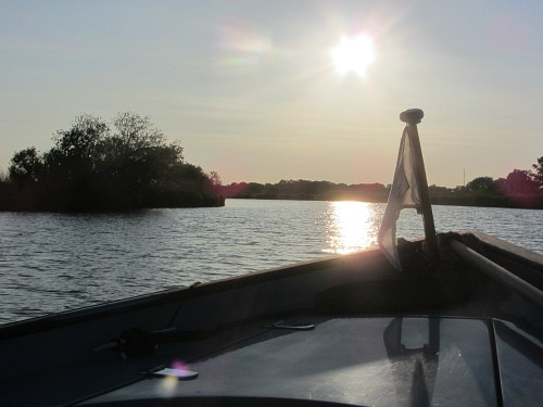 The setting sun on the Norfolk Wildlife Trust's Damselfly boat