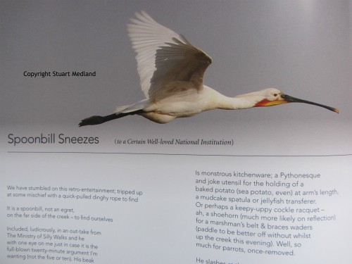 Worshipful Companies feature the Spoonbills
