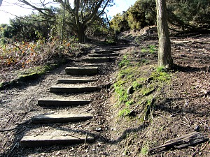 Steps to Incleborough Hill