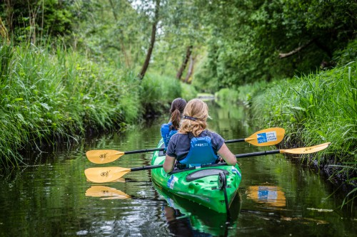 Kayaking with the RSPB on the River Yare in the Norfolk Broads