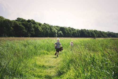 Wild Things Challenge at the RSPB reserves in Norfolk