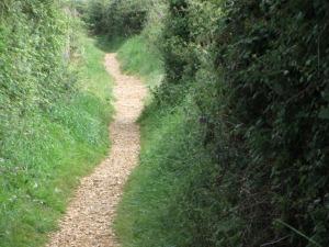 RSPB Snettisham gravel path