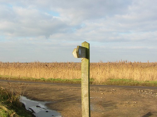 Norfolk Wildlife Trust's Cley Marshes