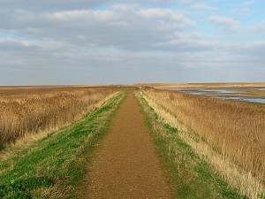 Cley Marshes sea wall