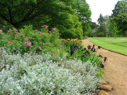 One of the many herbaceous borders at Sandringham House