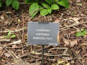 Sandringham House plant tags