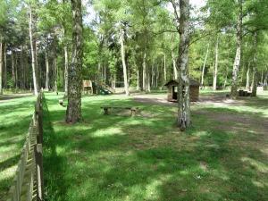 Sandringham Woods