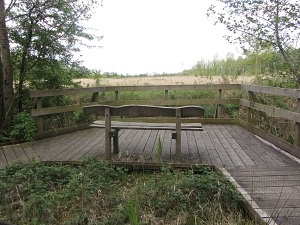 Lots of benches to watch the birds at Sculthorpe Moor
