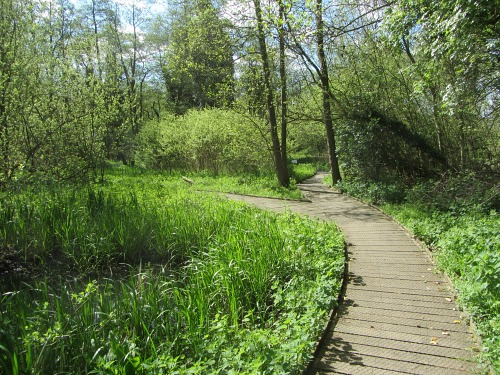 The beginning of the board walk at Sculthorpe Moor