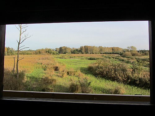 The view from the Fenland Hide at Sculthorpe Moor