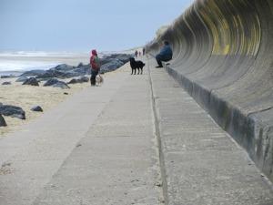 Dog walking on Sea Palling Beach