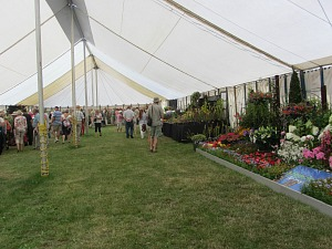 Horticultural exhibits at Sandringham Flower Show