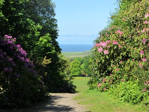 National Trust Sheringham Park