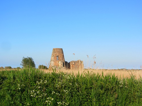 St Benet's Abbey in the Norfolk Broads
