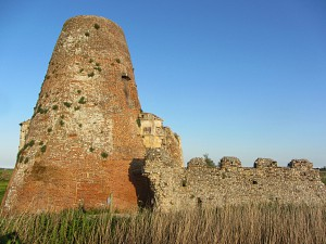 Some of the ruins at St Benet's Abbey