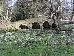 The packhorse bridge at Walsingham Abbey