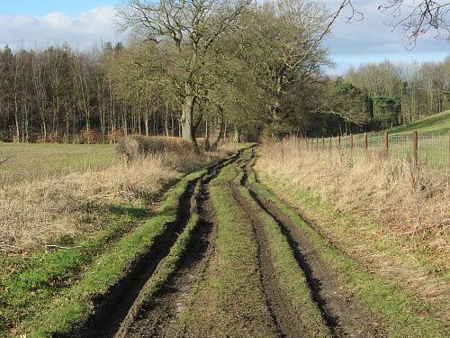 The incredibly peaceful Walsingham Circular Walk