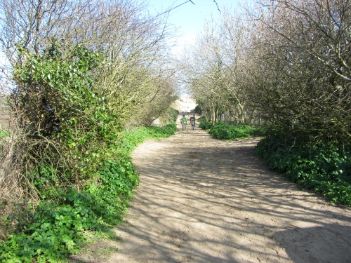 Approach to Waxham Beach