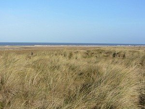 Views over the sand dunes along the Norfolk Coast Path