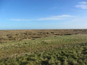 The salt marshes towards Stiffkey