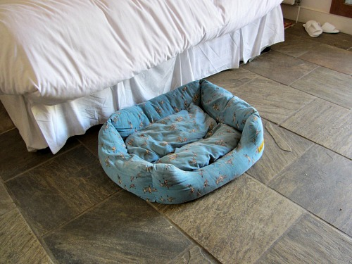 The cosy dog bed at Titchwell Manor