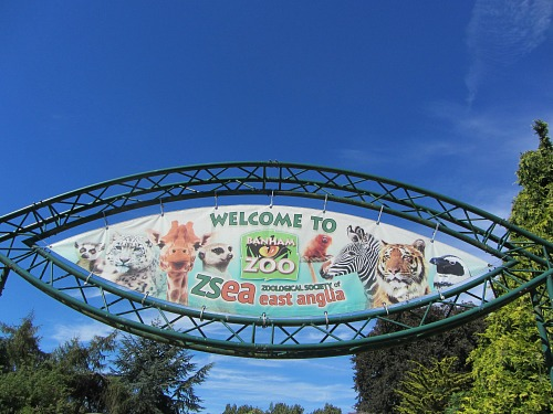 Welcome to Banham Zoo!
