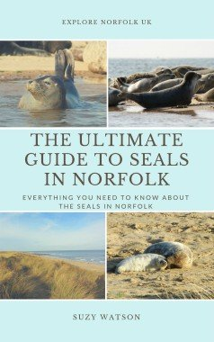 The Ultimate Guide to Seals in Norfolk
