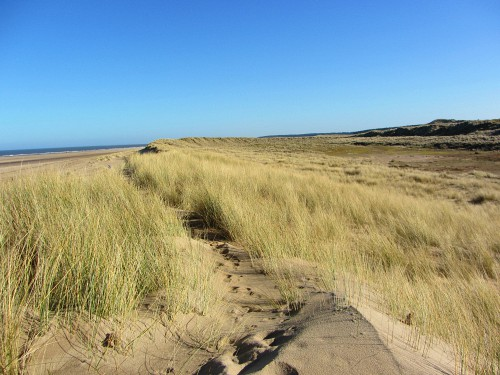 Norfolk Walking Holidays along the Norfolk Coast Path and/or Peddars Way & other walks