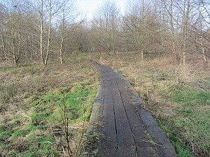 Castle Acre Circular walk boardwalk