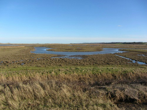 The watermeadows around Norfolk Wildlife  Trust's Cley Marshes Nature Reserve