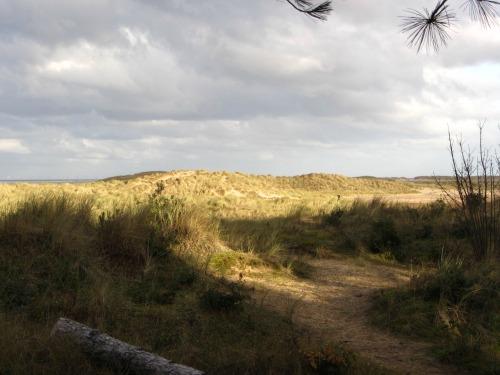 The sun on Holkham beach sand dunes