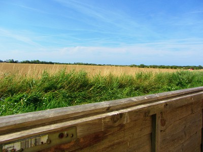 The wonderful view over the fields from Horsey Holiday House