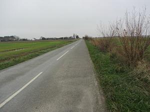 Horsey windpump walk.  Short bit of road until the footpath