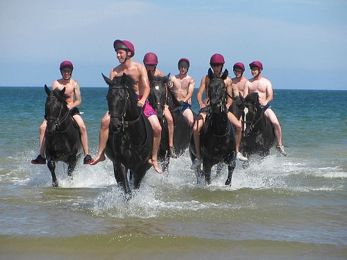 The Household Cavalry Exercising Their Horses on Holkham Beach