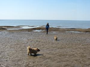 Dog Friendly Hunstanton Norfolk