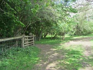 The Pingo Trail path