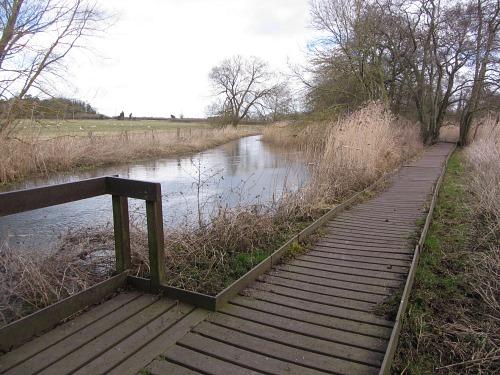 The necessary board walk along part of the Peddars Way near Thetford