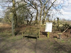 The first bench and the first Norfolk songline along the Peddars Way Path