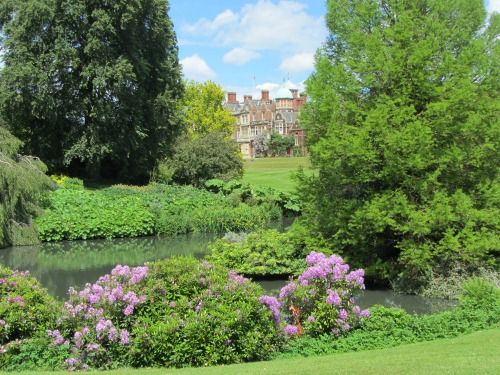 Rhodedendrans at Sandringham and another stunning view of the house