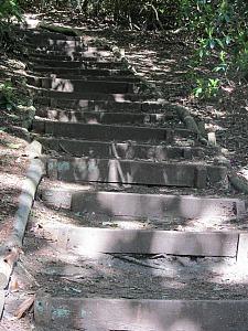 Steps to the gazebo at Sheringham Park