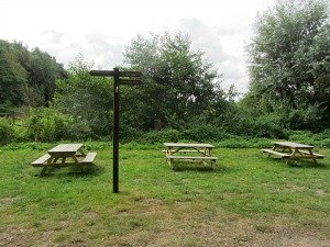 Enjoy lunch on these picnic tables
