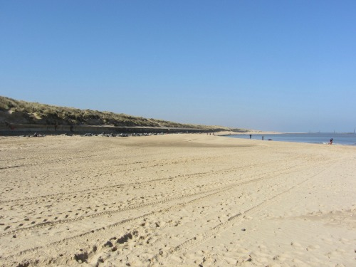 Blue Flag Status for Sea Palling Beach