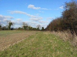 Open countryside on the Walsingham circular walk